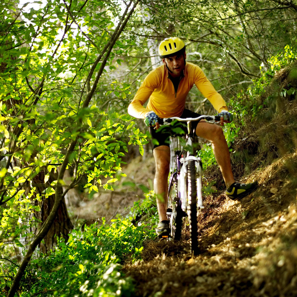 Young Man Cycling in a Forest --- Image by  Royalty-Free/Corbis
