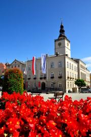 Radnice, Dzierzoniow