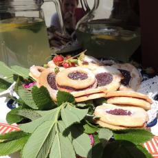 GM NOWA RUDA ciasteczka z konfiturą