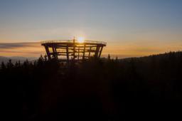 Večerní prohlídky Stezky korunami stromů