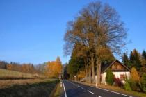Vlčkovice - nová silnice